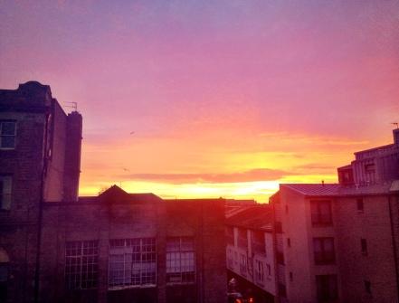 Dawn, from the window of my studio.